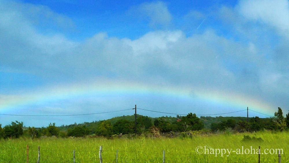 低い位置にでた虹