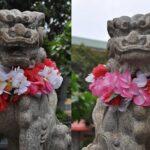 ハワイ出雲大社の場所と行き方|アロハな狛犬や人気のお守りで縁結び