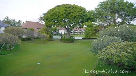 ラナイからの風景