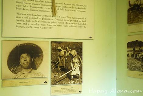 ヒストリーセンター日系移民