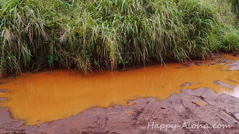 真っ赤な水たまり