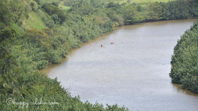 ワイルア川でカヤックをする人