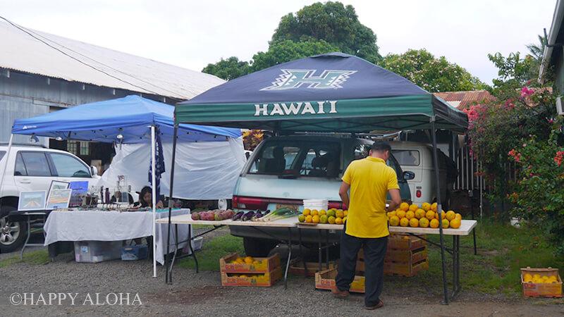 ハワイ大学のテント