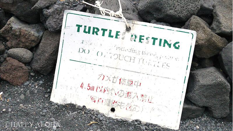 ウミガメを守るための看板