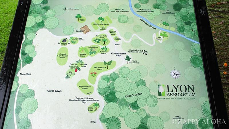 LYON ARBORETUM MAP