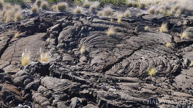 フェアウェイ・ヴィラズ・ワイコロア by アウトリガーの周りの溶岩台地