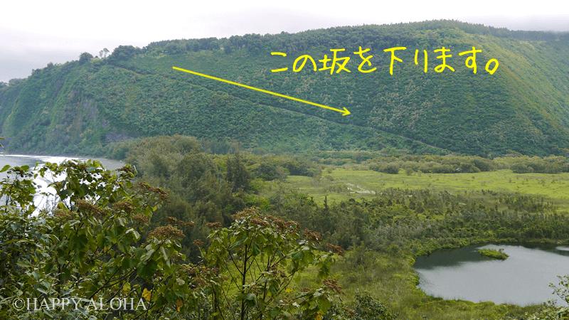 ワイピオ渓谷への坂道