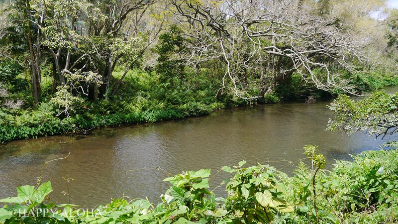 ワイピオ渓谷の川