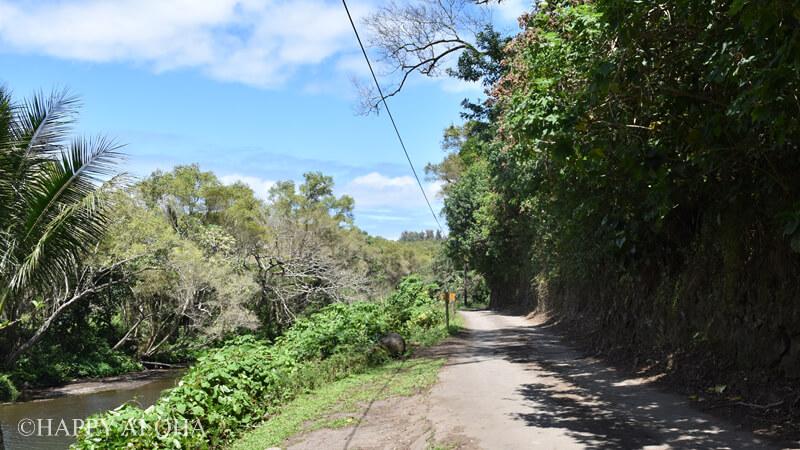 ワイピオ渓谷の道